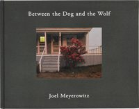 Between the Dog and the Wolf(A)(2nd Edition) (9784908512704)