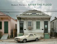 After the Flood (9783865212771)