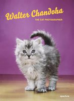 Walter Chandoha: The Cat Photographer (9781597114530)