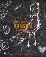 Graffiti, le langage du mur (9782365111157)