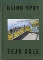 Blind Spot (9780571335015)