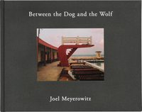 Between the Dog and the Wolf(B)(2nd Edition) (9784908512704)
