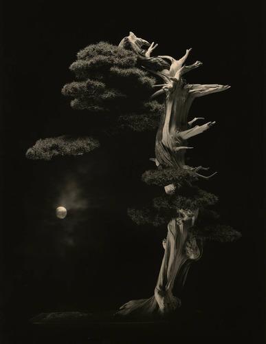 《手中一滴》© 山本昌男