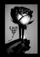 Flower and Me (9789881426277)