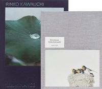 Rinko Kawauchi: Illuminance & Des Oiseaux