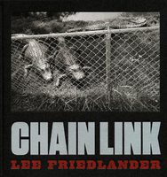 Chain Link (9783958292598)