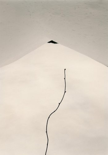 《小さきもの、沈黙の中で》© 山本昌男