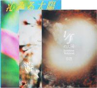 Aki Tanaka: Sun Series