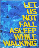 Let Us Not Fall Asleep While Walking (9781911306467)