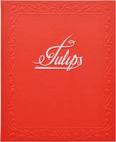 TULIPS (9780979069857)