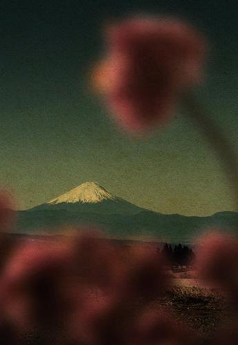 《Remembering the Future》© Albarrán Cabrera